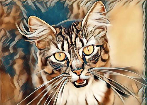 LunaPic | Free Online Photo Editor | Prisma Styles